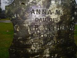Anna M Anthony