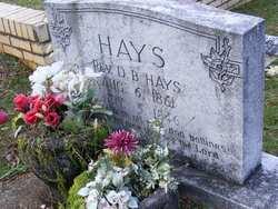 Rev D. B. Hays