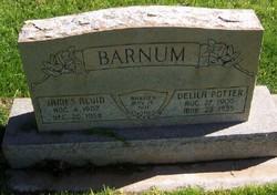 Delila <i>Potter</i> Barnum