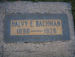 Halvy E. Bachman