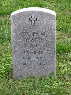 Tony M Beach