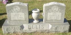 George Herbert Ellis