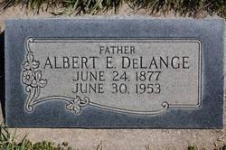 Albert E DeLange