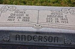 Hannah Regina <i>Torgersen</i> Anderson