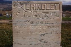 Jane <i>Shutt</i> Brindley