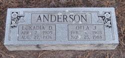 Lokadia <i>David</i> Anderson