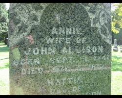 Annie <i>Johnson</i> Allison