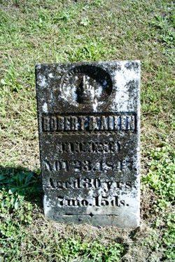 Robert B Allen