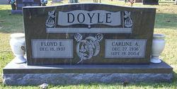 Carline Ann <i>Harp</i> Doyle
