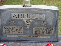 Annie Carl <i>Carter</i> Arnold