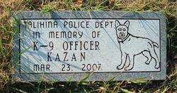 Kazan K-9 Officer Kazan