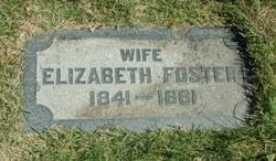 Elizabeth <i>Foster</i> Evans