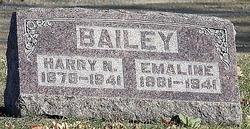 Harry N Bailey