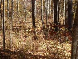Conard Family Burial Site