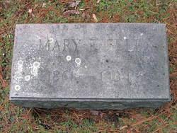 Mary E Felt