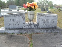 Carrie Lou <i>Dalton</i> Sizemore