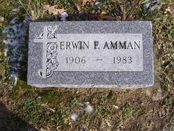 Erwin F. Amman