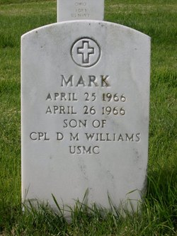 Mark M Williams
