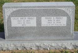 Noah S Abolt