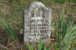 Tennessee M <i>Griffith</i> Chronister