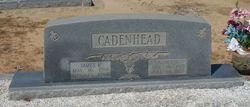 Agnes H. Cadenhead