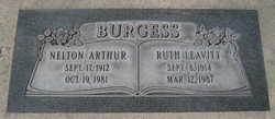 Nelton Arthur Burgess