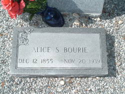 Harriet Alice <i>Stevens</i> Bourie