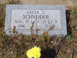 Lucia J <i>Skonetski</i> Schneider
