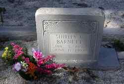 Shirley E Barnett
