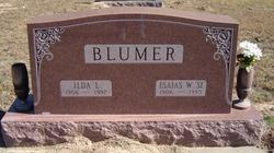 Ilda Lafaun Sunshine <i>Luster</i> Blumer
