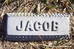Jacob Bissegger