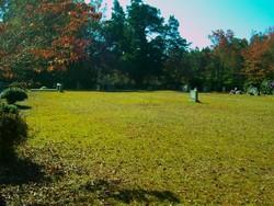 Peterson Cemetery