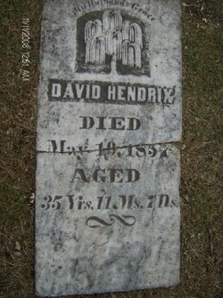 David S Hendricks