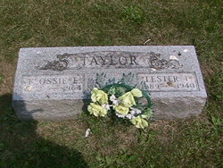 Lester T Taylor