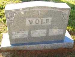 Joseph J. Wolf