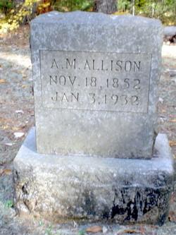 Alanzo McHenry Allison