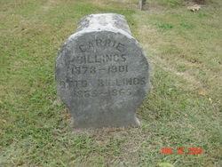 Otto Billings