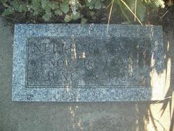 Nellie G Davis