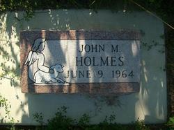 John M Holmes