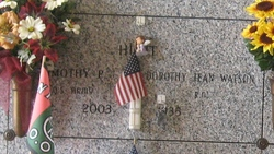Timothy P Hunt