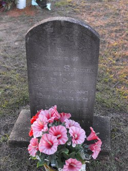 Roxieann Safronia <i>Flowers</i> Cooper