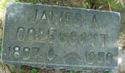 James A Colescott