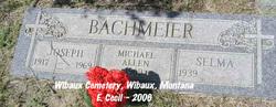 Michael Allen Bachmeier