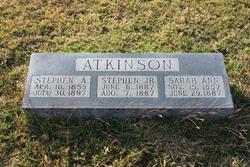 Sarah Ann Atkinson