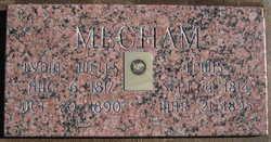 Lewis Mecham