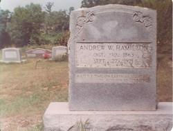Andrew W. Hamilton