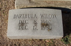 Darthula Wilcox