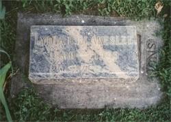 Lydia Elizabeth Lizie <i>Jackson</i> Blakeslee