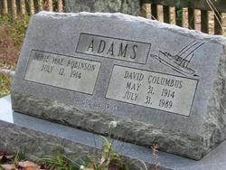 Denie Mae <i>Robinson</i> Adams