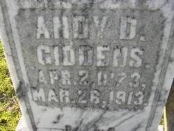 Andy D. Giddens